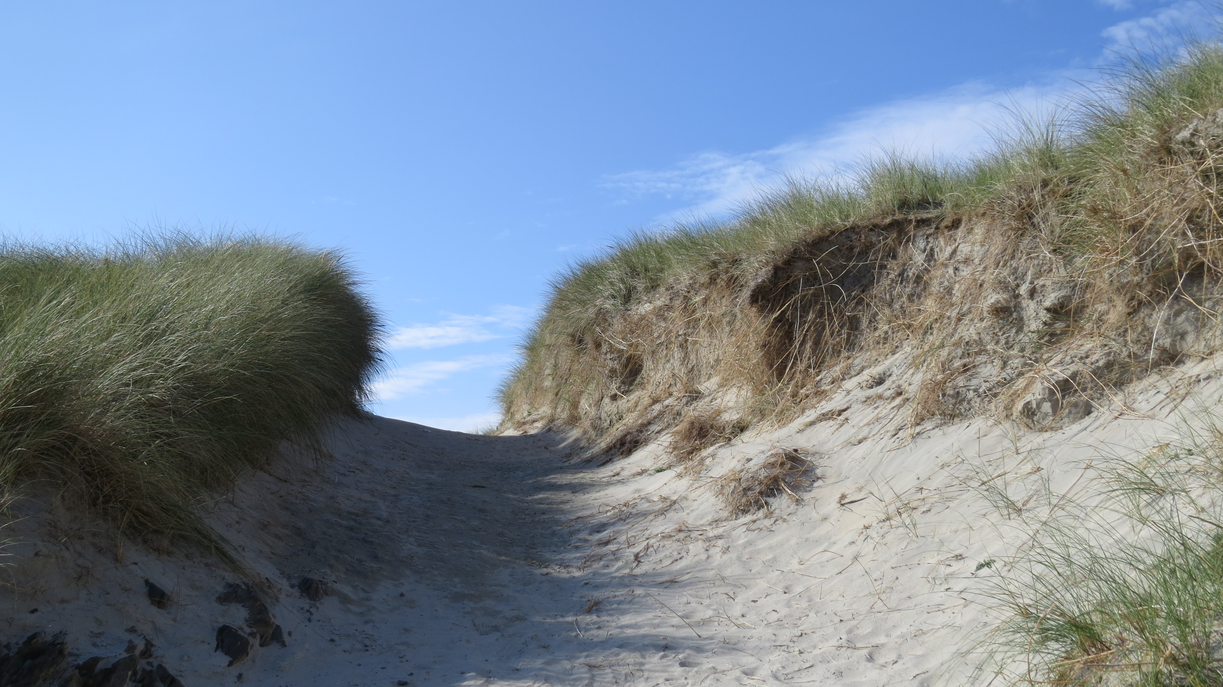 climb into the dunes